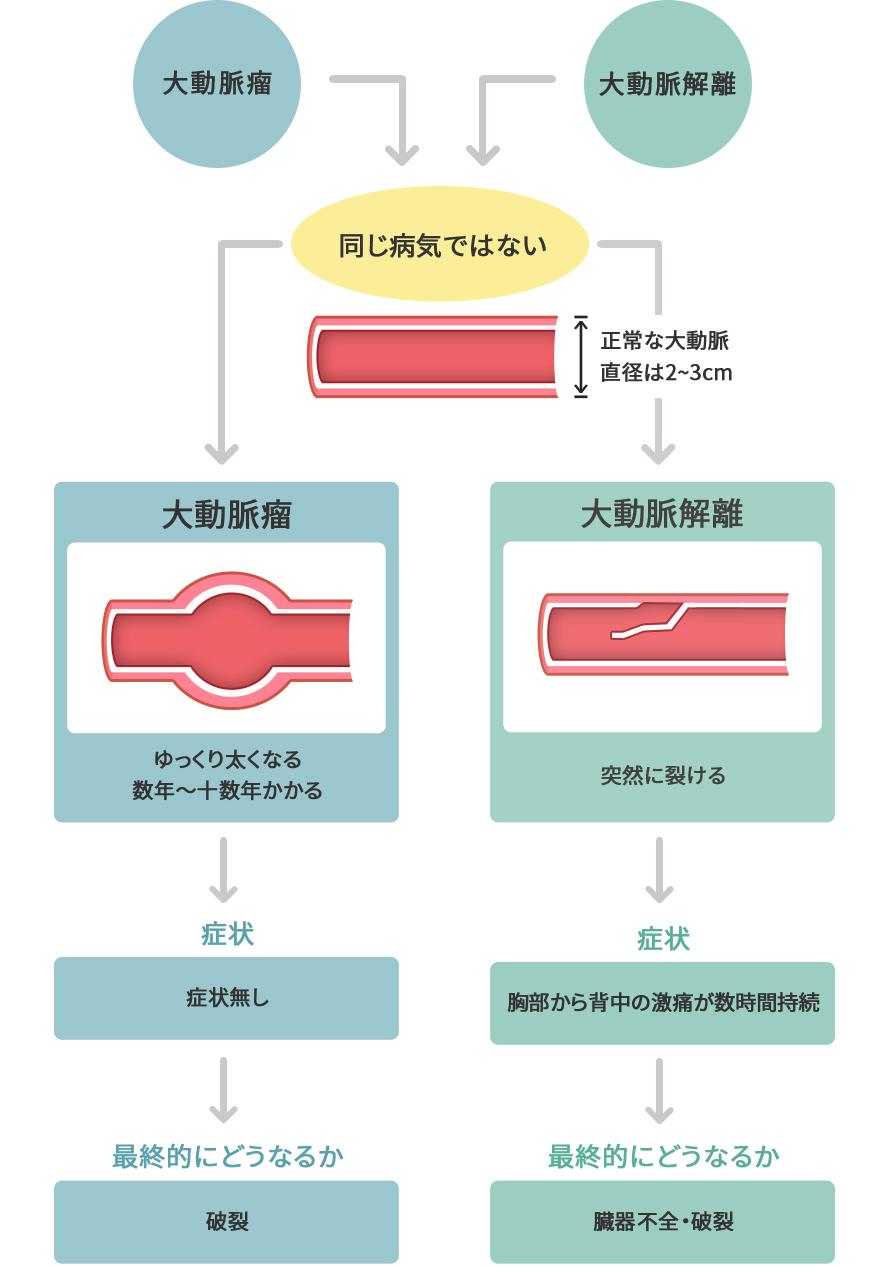 大動脈 解離 合併 症